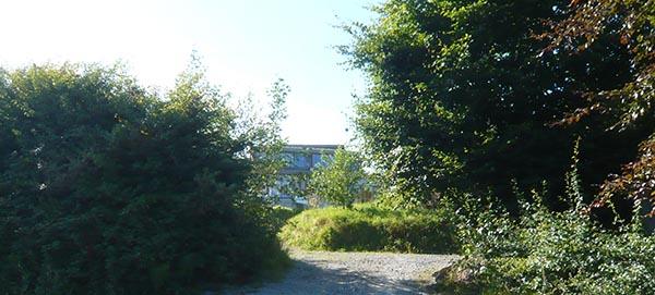 Eco Tree House
