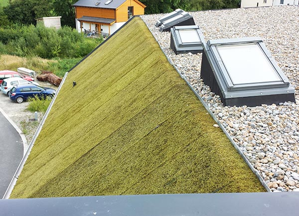 Green Eco Roof Architect